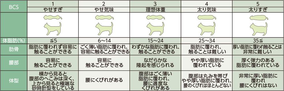 猫のBCS表