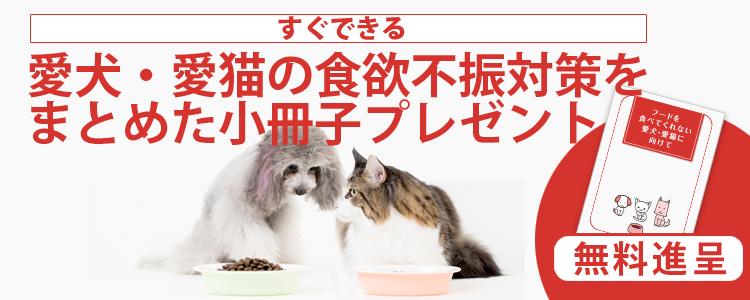 犬猫の食欲不振対策小冊子プレゼント